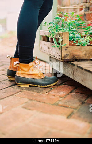 A woman wearing waterproof boots, with a box of seedlings. - Stock Photo