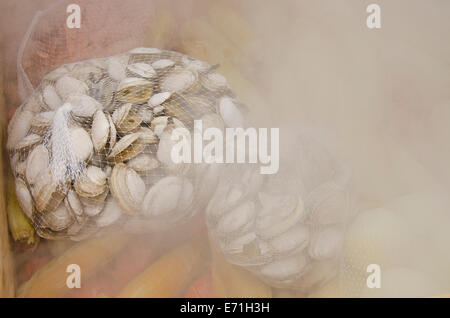 USA, Massachusetts, Martha's Vineyard. Steaming hot traditional New England lobster and clam bake. - Stock Photo