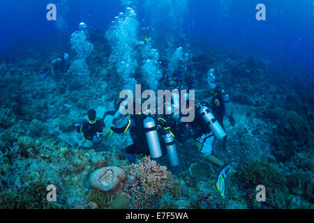 Group of scuba divers on the sea bottom in a coral reef, Philippines - Stock Photo