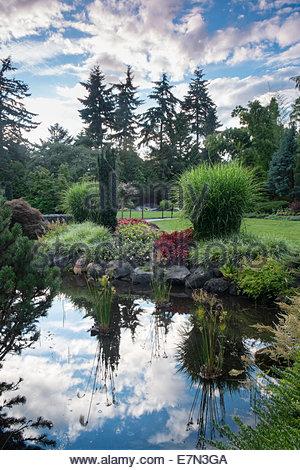 Pond Reflections in Sunken Garden at Queen Elizabeth Park, Vancouver, B.C. - Stock Photo