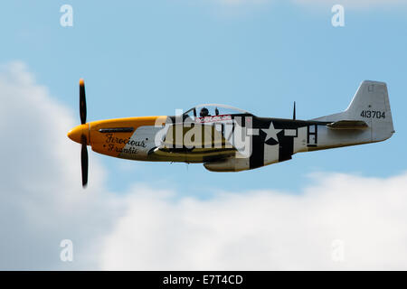North American P-51D Mustang, Ferocious Frankie - Stock Photo
