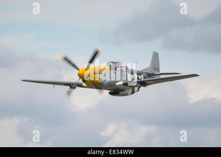 A low and fast fly past by the P-51D Mustang fighter, Ferocious Frankie, at Dunsfold Wings & Wheels 2014. - Stock Photo