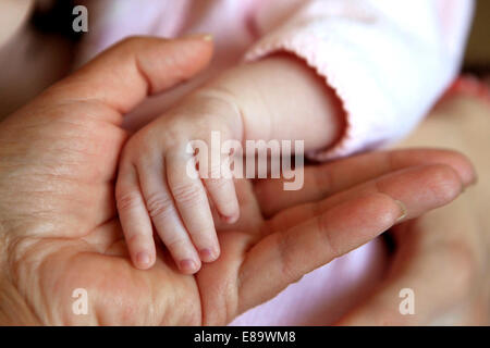 The image of hands of parent and the child - Stock Photo