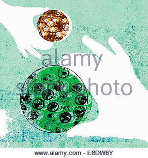Close up of hands holding micro organisms growing in petri dishes - Stock Photo
