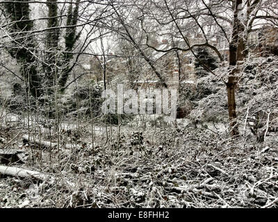 UK, London, London Borough of Haringey, Highgate Village, Urban winter scene with houses - Stock Photo