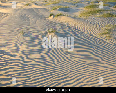 Ripples in sand on beach, Denmark - Stock Photo