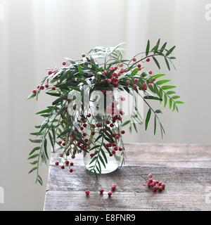 Green plant with red berries in vase on wooden table - Stock Photo