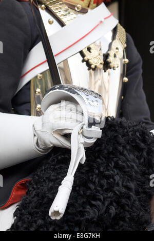 Close up of Her Majesty the Queens Horse guard White Gloved Hand and Sword - Stock Photo