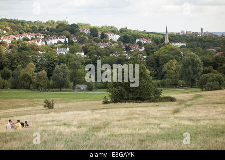Hampstead Heath common park in North London near Highgate London England United Kingdom - Stock Photo