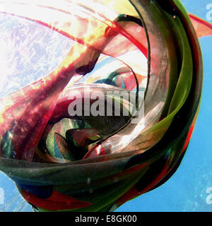 Multi-colored scarf floating underwater - Stock Photo