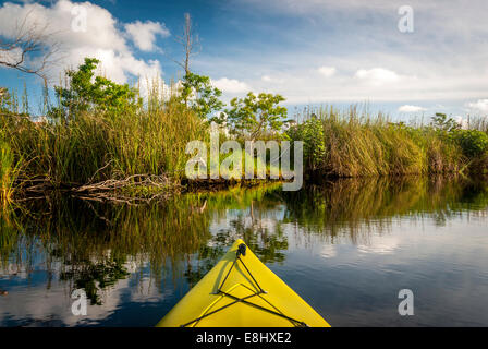 Kayaking in Middle Lake in Gulf State Park in Gulf Shores, Alabama, along the Alabama Gulf Coast. - Stock Photo