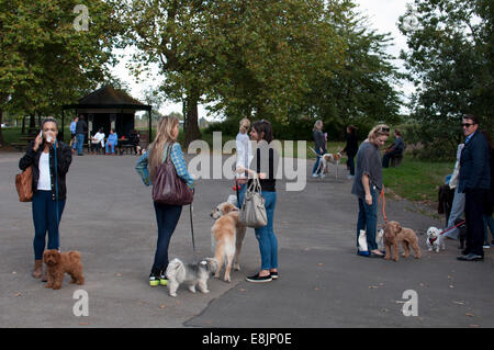 People with dogs, Regent`s Park, London, UK - Stock Photo