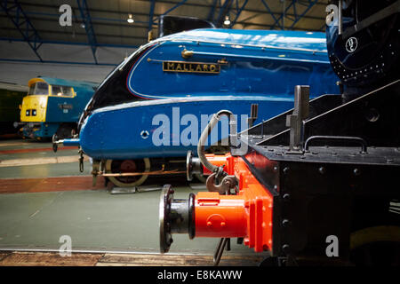 Mallard on display in the great hall National Railway Museum in York Yorkshire UK - Stock Photo