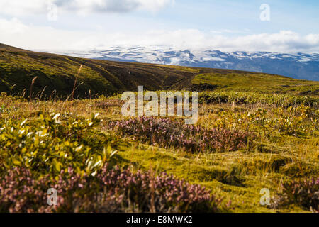 Scenic view along laugavegur trail, Eyjafjallajökull  in background - Stock Photo
