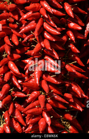 Red and orange chillis on a stall, Puglia Italy - Stock Photo