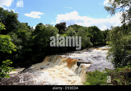3290. Middle Aysgarth Falls, River Ure, Aysgarth, Wensleydale, North Yorkshire, UK - Stock Photo