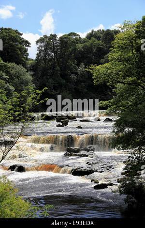 3293. Upper Aysgarth Falls, River Ure, Aysgarth, Wensleydale, North Yorkshire, UK - Stock Photo