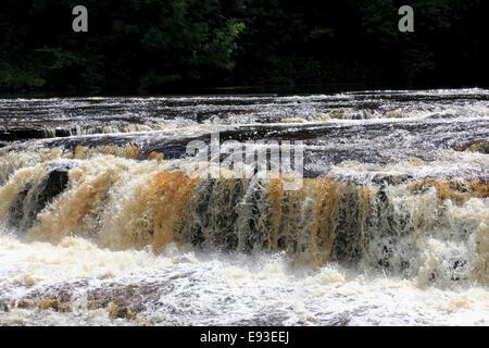 3294. Upper Aysgarth Falls, River Ure, Aysgarth, Wensleydale, North Yorkshire, UK - Stock Photo
