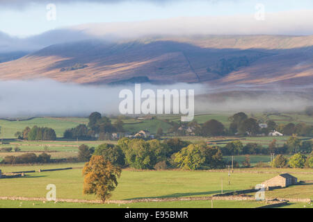 Dawn over Wensleydale, Yorkshire Dales National Park, North Yorkshire, England, UK - Stock Photo