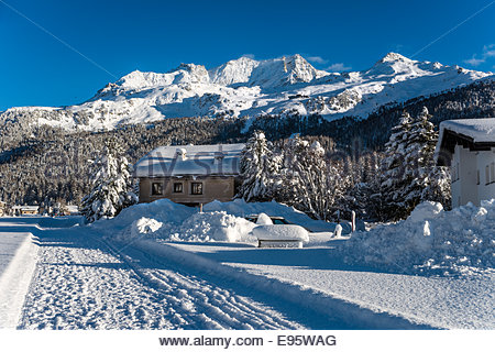 Switzerland, Engadine, Sils-Maria, Winter landscape | Schweiz, Oberengadin, Sils-Maria Winterlandschaft - Stock Photo