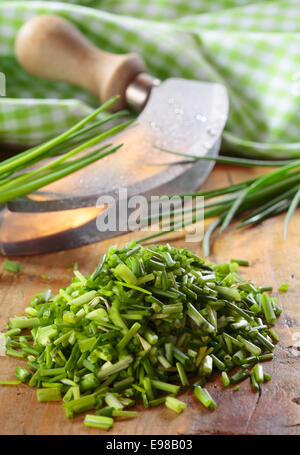 Pile of chopped fresh chives lying on a wooden kitchen table with a curved chopping knife and checked green and - Stock Photo
