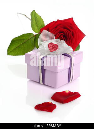 Red roses and gift box isolated on white background - Stock Photo