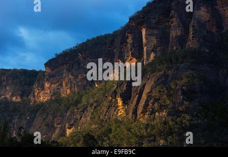 Sandstone escarpment in warm evening sunlight, Wollemi National Park, NSW, Australia - Stock Photo