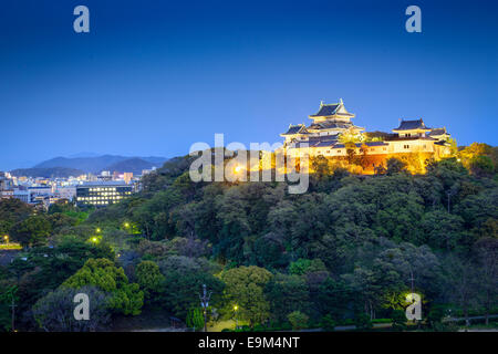 Wakayama City, Japan at Wakayama Castle. - Stock Photo