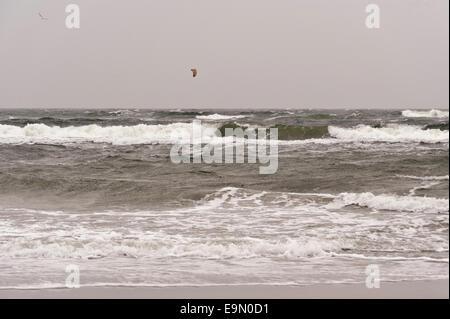 Baltic Sea on Darss in Germany - Stock Photo