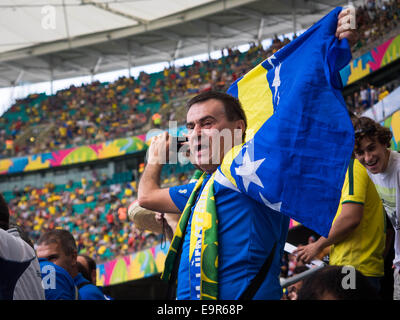 Bosnia and Herzegovina fan celebrating victory against Iran at World Cup match at Fonte Nova stadium in Salvador, - Stock Photo