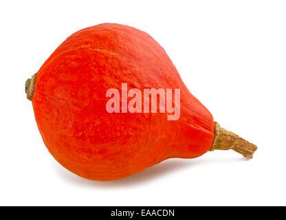 Red kuri squash isolated on white background - Stock Photo
