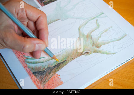 Man's hand drawing with color pencil. Close view. - Stock Photo