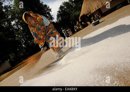 Young girl sweeping flour together on the ground in the village of Idool, Idool, Adamawa Region, Cameroon - Stock Photo