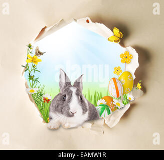 Conceptual spring theme with gappy paper and spring meadow with rabbit, butterflies and blooming chamomiles - Stock Photo