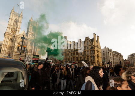 London, UK. 19th November, 2014. Anarchist set's of flare outside Parliament. Credit:  Lewis Inman/Alamy Live News - Stock Photo