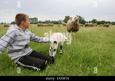 DJURDJENOVAC, CROATIA - JULY 25 : A young shepherd holding a goatling on a meadow on July 25th, 2010 in Djurdjenovac, - Stock Photo