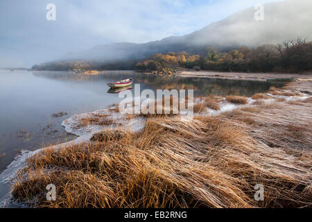 Frosty winter morning on the shore of Upper Lake, Killarney National Park, County Kerry, Ireland. - Stock Photo
