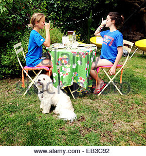 Two Pet Dogs Sitting On A Deck With Happy Birthday