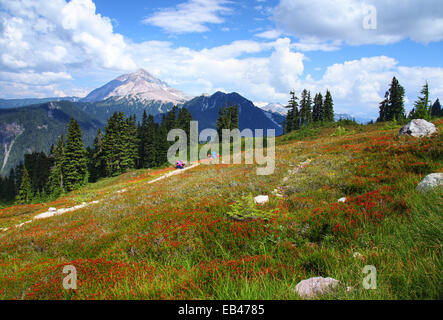 Garibaldi Provincial Park, British Columbia, Canada - Stock Photo