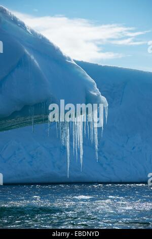 Icicles hanging from the edge of an iceberg in Iceberg Alley of the Lemaire Channel, Antarctic Peninsula. - Stock Photo
