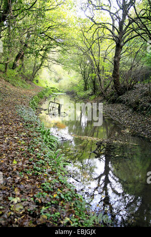 The Cromford canal near the Butterley tunnel at Ripley, Derbyshire, England, UK. - Stock Photo