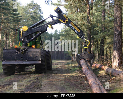 Scotch pine, Scots pine (Pinus sylvestris), Forwarder with timber, Germany, Lower Saxony - Stock Photo