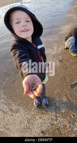 little boy standing on the North Sea beach and showing a founded seashell, Netherlands - Stock Photo