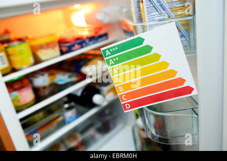 European Union energy label in front of a refrigerator, Germany - Stock Photo