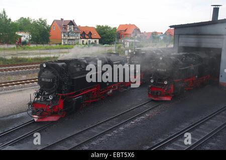 steam locomotives of Harz Narrow Gauge Railways , Germany, Saxony-Anhalt, Wernigerode - Stock Photo