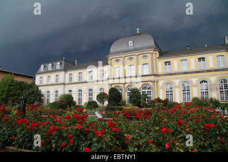 Poppelsdorf Palace, Germany, North Rhine-Westphalia, Bonn - Stock Photo