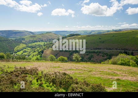 Welsh rural landscape near Denbigh with rolling hills and emerald green fields hemmed with hedgerows stretching - Stock Photo