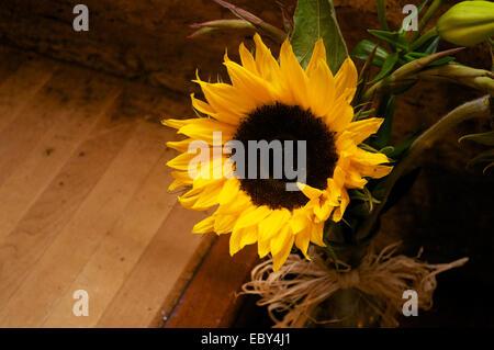 Sunflower bouquet with wooden floor background. - Stock Photo
