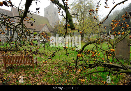 Dickens - graveyard at Shorne Parish church, near to his Gad's Hill home, and in which the English novelist had - Stock Photo