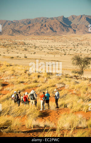 Africa, Namibia. Tok Tokkie Trails. Hiking to campsite. Model released. - Stock Photo